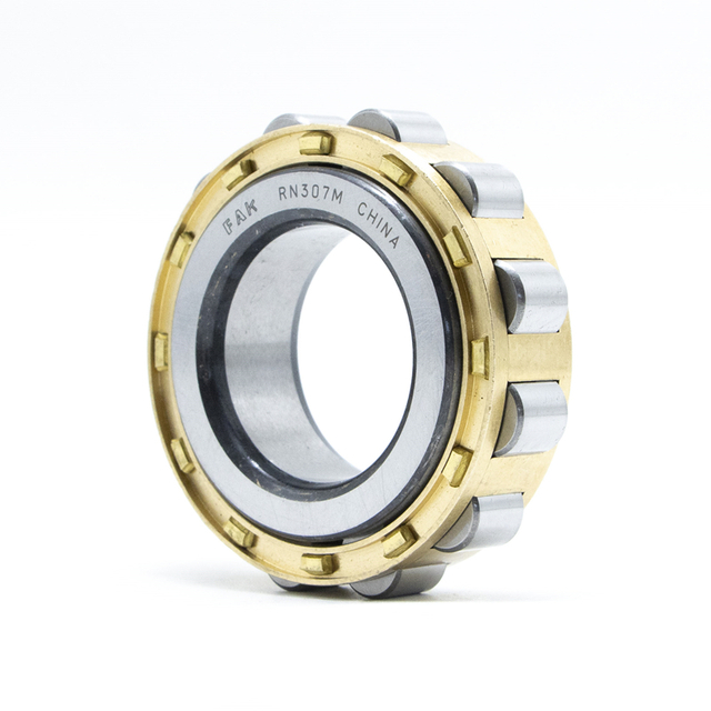 Long-Lived Bearing FAK Cylindrical Roller Bearing N310