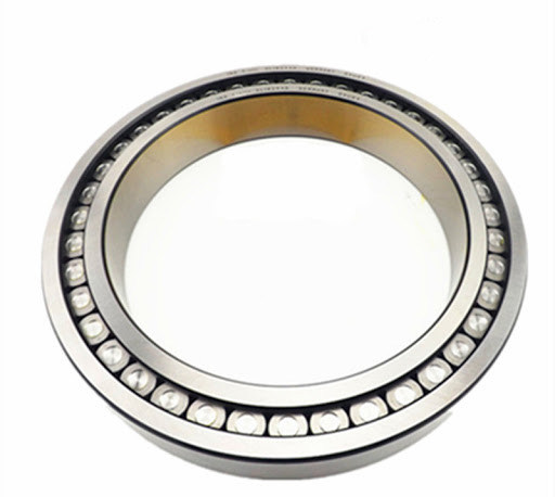 Metal Conveyor Roller Bearing SL182218 SL182214 SL182216 SL182210 Full Complement Cylindrical Roller Bearing Combined Roller Bearing